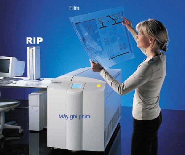 Phơi kẽm được coi như một bước kiểm tra quá trình in ấn sản phẩm.